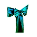 Rental store for SATIN TIES TEAL in Hamilton NJ